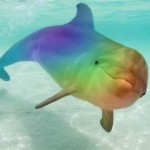 rainbow_dolphin_by_bluemoongem-d2yt2j6